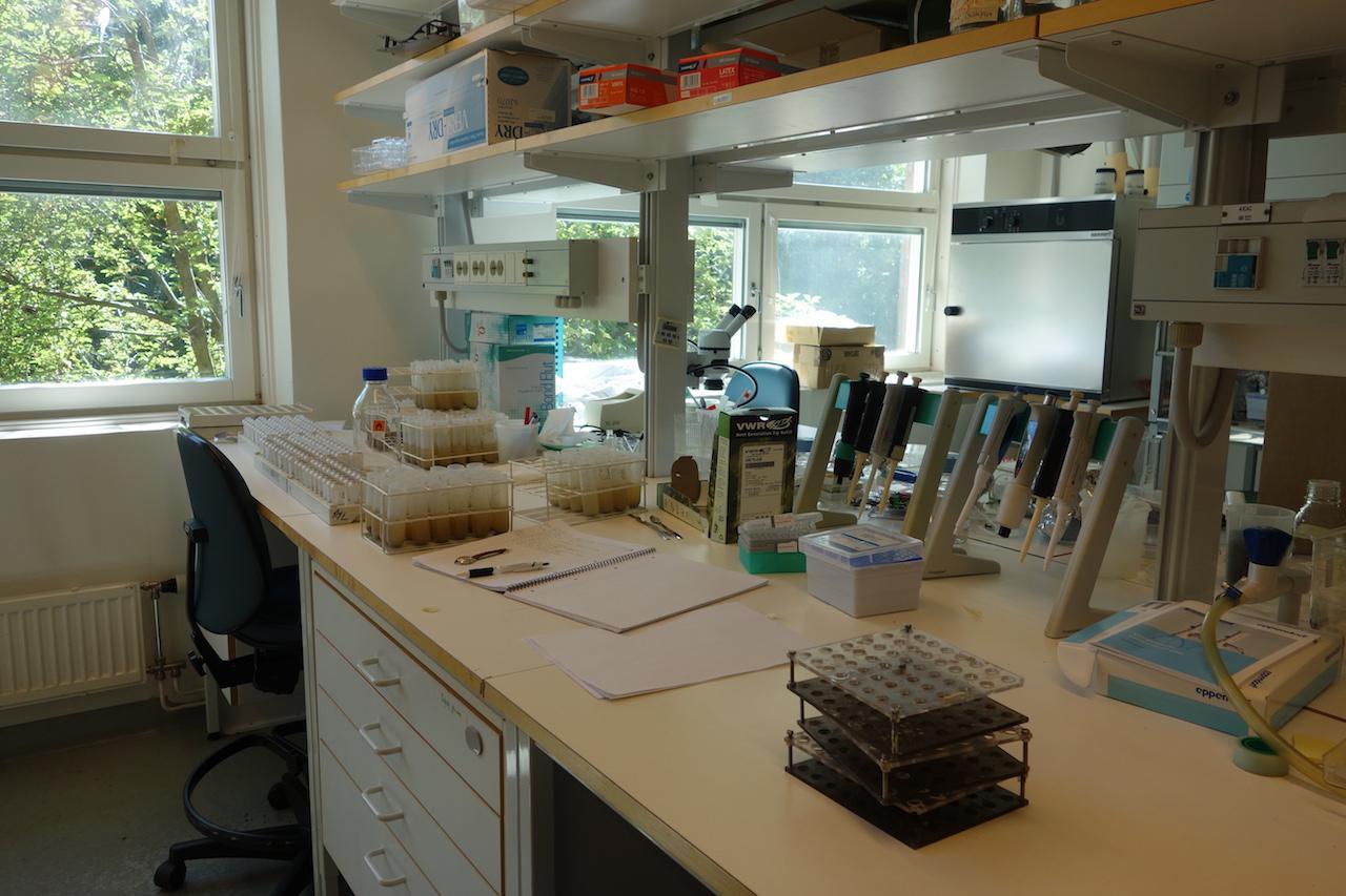 実験室の雰囲気