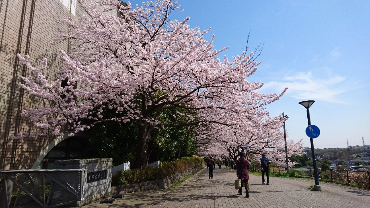 首都大学東京(春)