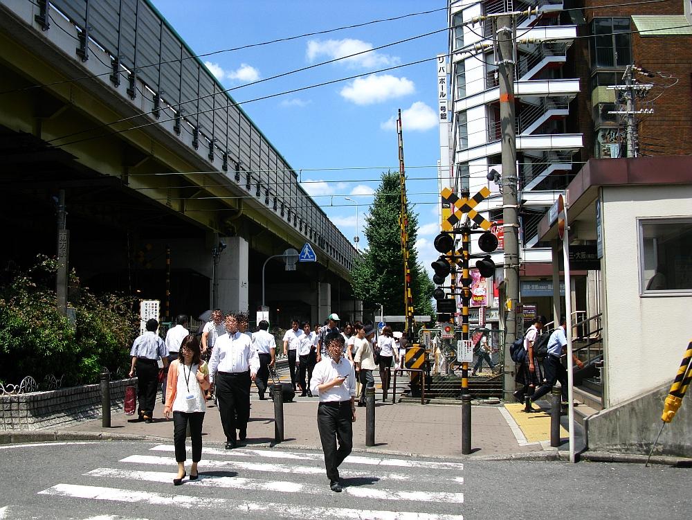 2015_08_05西中島南方:テンカラ一番どり (1)