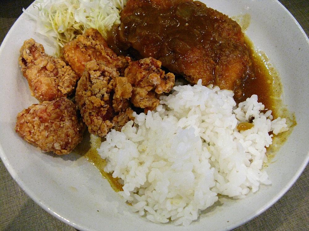 2015_08_05西中島南方:テンカラ一番どり- (33)