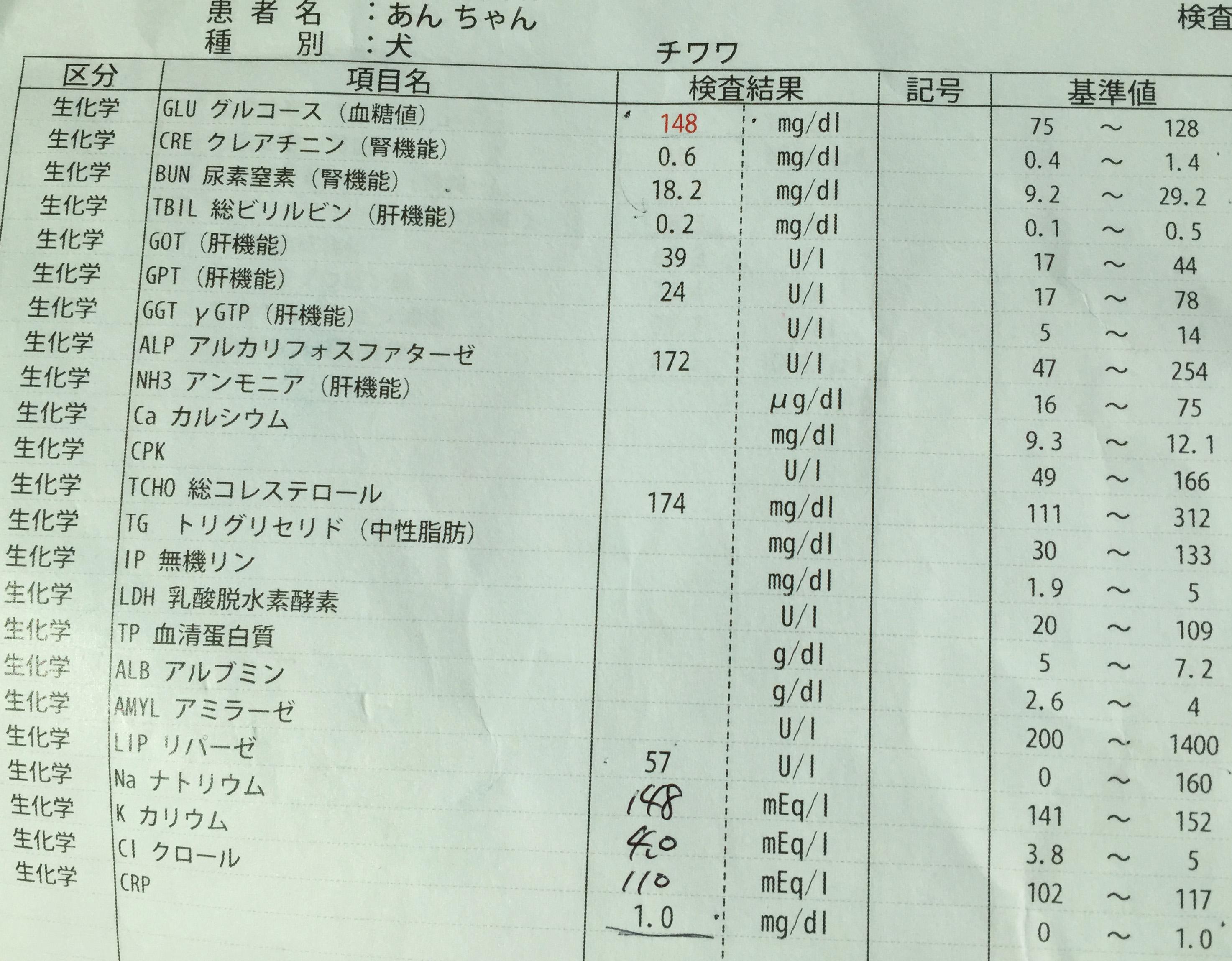 検査報告書02