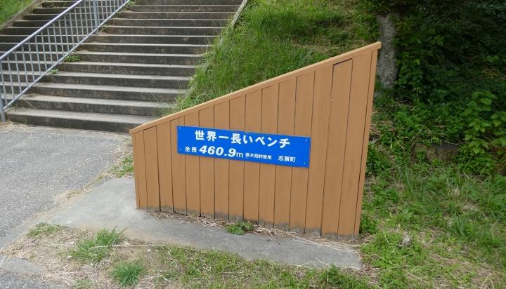 P1100243_.jpg