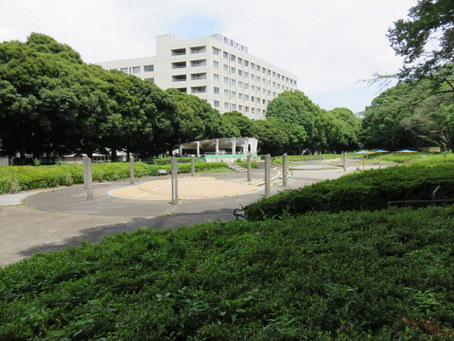 駒沢オリンピック公園15