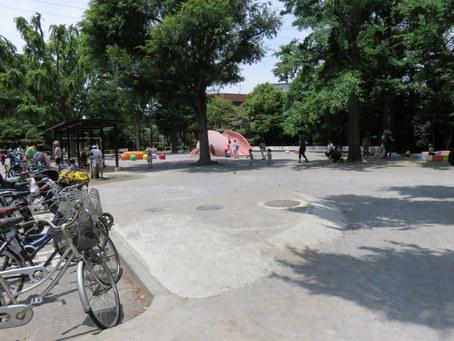 ぶた公園1
