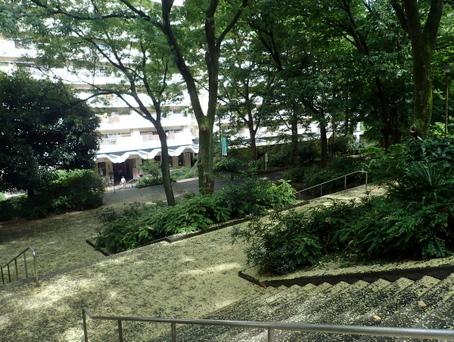 戸山ハイツ04