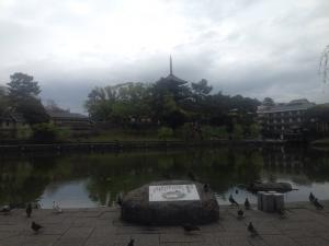 sarusawa0413_convert_20160413112930.jpg