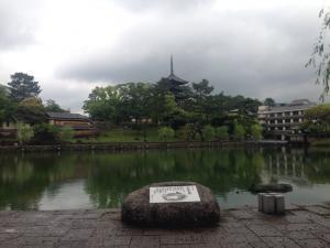 sarusawa0511_convert_20160511122223.jpg