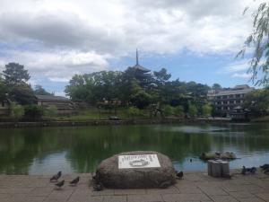 sarusawa0516_convert_20160516112603.jpg
