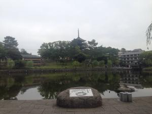 sarusawa0604_convert_20160604113925.jpg