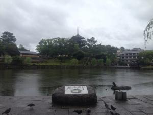 sarusawa0605_convert_20160605121108.jpg