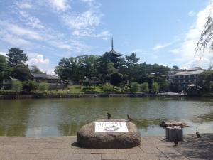 sarusawa0705_convert_20160705114351.jpg