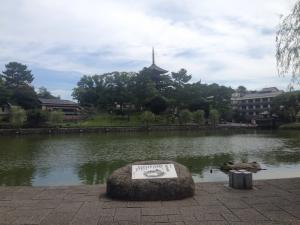 sarusawa0723_convert_20160723111636.jpg