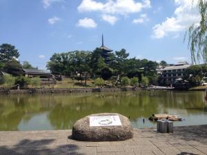 sarusawa0812_convert_20160812115939.jpg