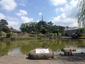 sarusawa0820_convert_20160820112234.jpg