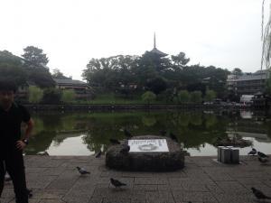 sarusawa0924_convert_20160924112106.jpg