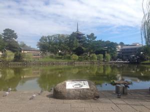 sarusawa0927_convert_20160927111555.jpg