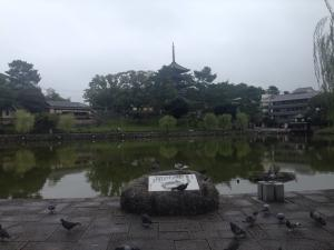 sarusawa1001_convert_20161001114332.jpg