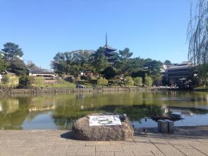 sarusawa1016_convert_20161016110451.jpg