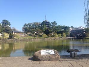 sarusawa1019_convert_20161019112618.jpg