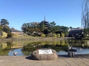 sarusawa1102_convert_20161102120433.jpg