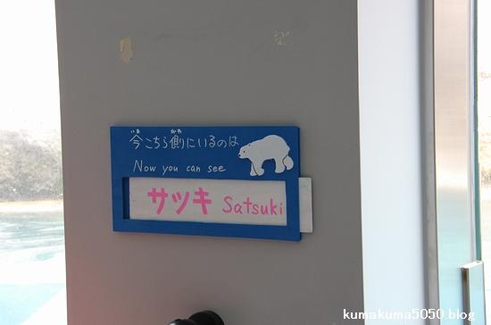旭山動物園_14