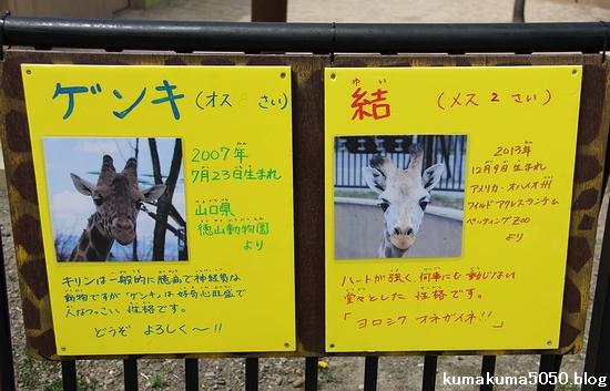 旭山動物園_30