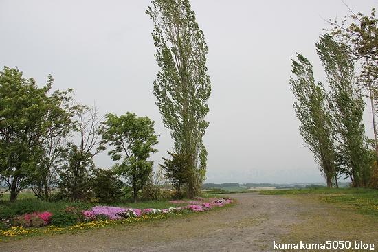 初夏の北海道旅行_35