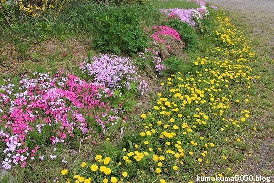 初夏の北海道旅行_36