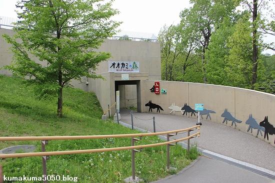 旭山動物園_34