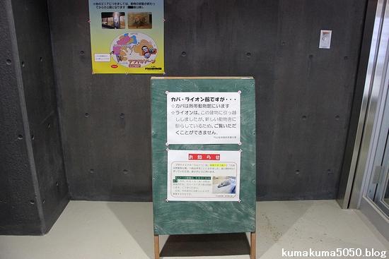 円山動物園_5