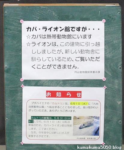円山動物園_6