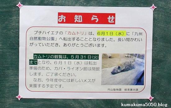 円山動物園_7
