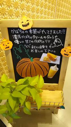 ナナスグリーンティーかぼちゃタルト (6)