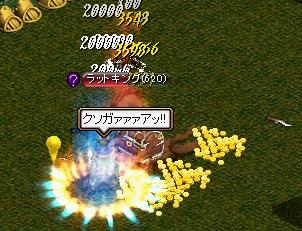 姫ラット2