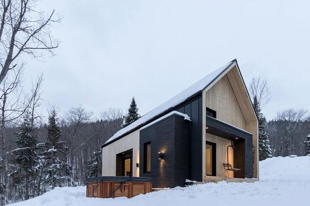 contemporary-wood-villa-1.jpg