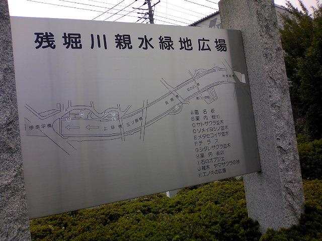 TS3J0756.jpg