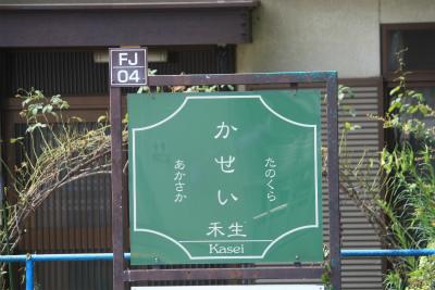 IMG_6641a.jpg