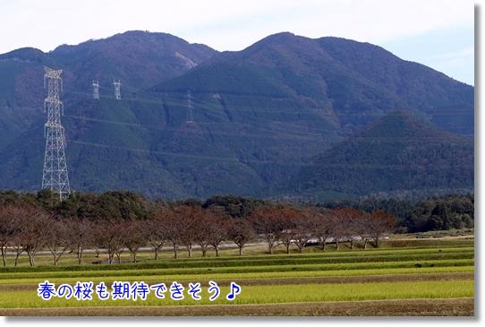 3V9A5044.jpg