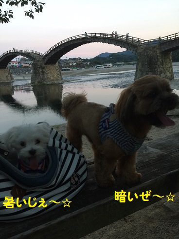 20160730錦帯橋