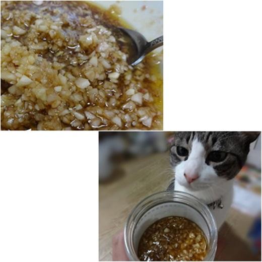 cats1_20160705144858250.jpg