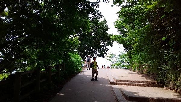takao20160626_095424.jpg