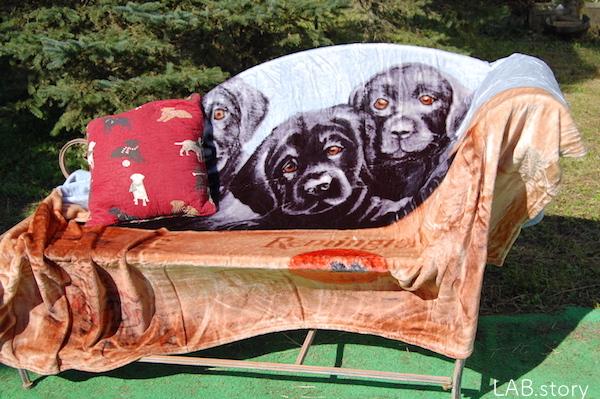 blanket_wood5.jpg