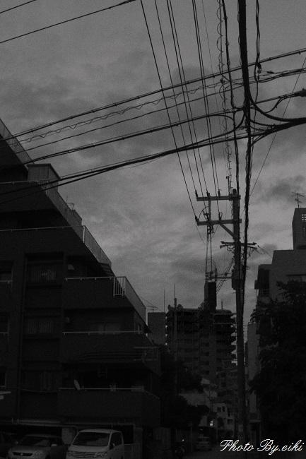 _IGP57971.jpg