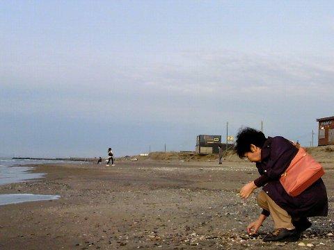 貝殻を拾う豹柄の女