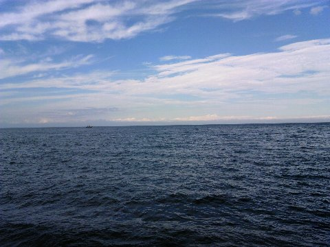 海は広いな大きいな
