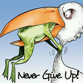 Never never give up!!