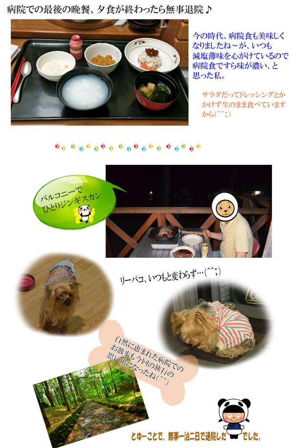 2日め② のコピー