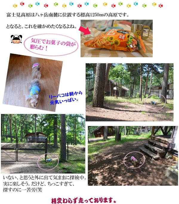 3日め①-1 のコピー