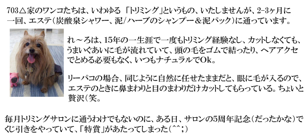 3日め⑤ のコピー