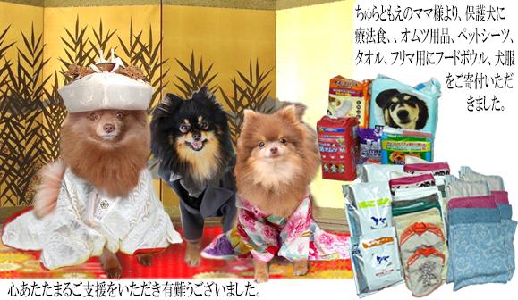 248(2016春)ちゅらともえのママ様ご支援報告 のコピー